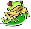 Amphibian Worksheets