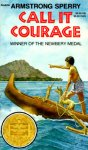 Call It Courage Worksheets and Literature Unit