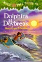 Dolphins at Daybreak (Magic Tree House #9) Worksheets and Literature Unit