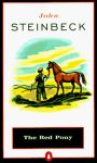 The Red Pony Worksheets and Literature Unit