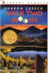 Walk Two Moons Worksheets and Literature Unit