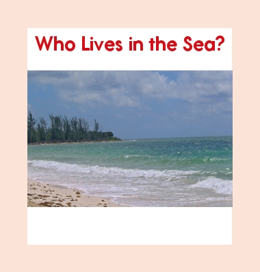 Leveled Book: Who Lives in the Sea?