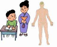 Free Nervous System Worksheets