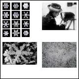 Snowflake Secrets