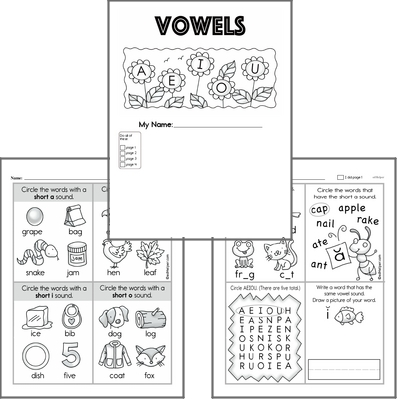 Introduction to Vowels Workbook