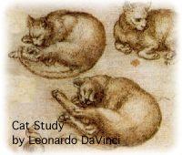 Leonardo da Vinci<BR>Draw Like da Vinci