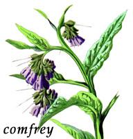 More Herbs, Less Salt Day<BR>A Smart Idea