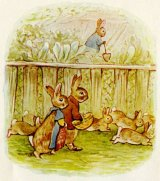 Beatrix Potter<BR>The Girl Who Loved Animals