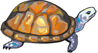 World Turtle Day<BR>A Place for Mabel