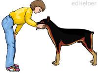 Adopt a Dog Month<BR>A Rescue for Karen
