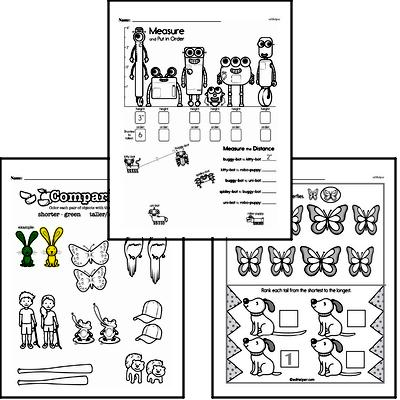 Measurement Workbook (all teacher worksheets - large PDF)