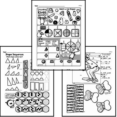 Geometry - 2D Shapes Workbook (all teacher worksheets - large PDF)