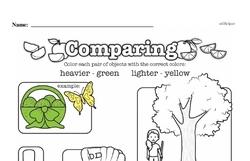 Second Grade Measurement Worksheets - Measurement and Comparisons Worksheet #14