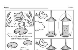 Kindergarten Data Worksheets Worksheet #13