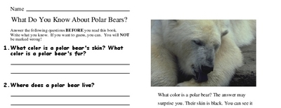 What Do You Know About Polar Bears?