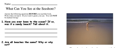 What Can You See at the Seashore?
