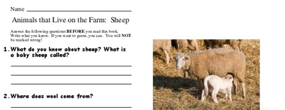 Animals that Live on the Farm:  Sheep