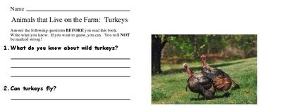 Animals that Live on the Farm:  Turkeys