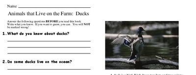 Animals that Live on the Farm:  Ducks