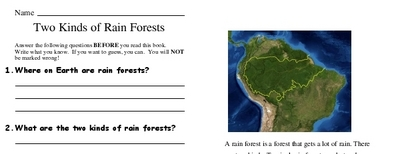 Two Kinds of Rain Forests