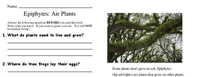 Epiphytes: Air Plants