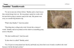 Tumblin' Tumbleweeds