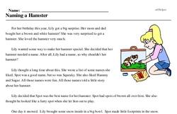 Print <i>Naming a Hamster</i> reading comprehension.