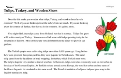 Print <i>Tulips, Turkey, and Wooden Shoes</i> reading comprehension.
