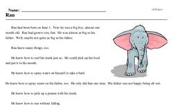 Elephant Day<BR>Rau