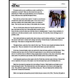 Print <i>Mule Days</i> reading comprehension.