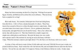 Print <i>Honey - Nature's Sweet Treat</i> reading comprehension.