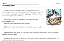 National Bird Feeding Month<BR>Attracting Birds