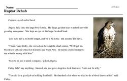 Print <i>Raptor Rehab</i> reading comprehension.