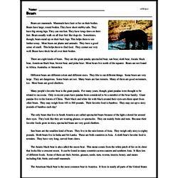 Print <i>Bears</i> reading comprehension.