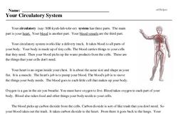 Print <i>Your Circulatory System</i> reading comprehension.