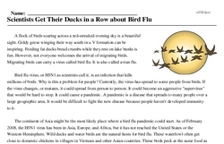 Print <i>Scientists Get Their Ducks in a Row about Bird Flu</i> reading comprehension.