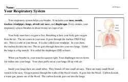 Print <i>Your Respiratory System</i> reading comprehension.