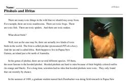 Print <i>Pitohuis and Ifritas</i> reading comprehension.