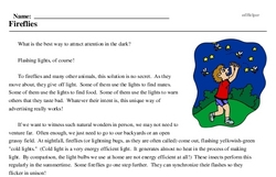 Print <i>Fireflies</i> reading comprehension.