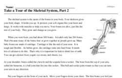 Print <i>Take a Tour of the Skeletal System, Part 2</i> reading comprehension.