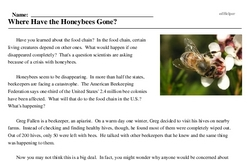 Print <i>Where Have the Honeybees Gone?</i> reading comprehension.