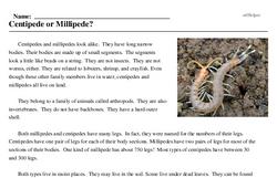 Print <i>Centipede or Millipede?</i> reading comprehension.