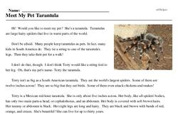 Print <i>Meet My Pet Tarantula</i> reading comprehension.