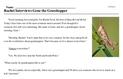 Print <i>Rachel Interviews Gene the Grasshopper</i> reading comprehension.