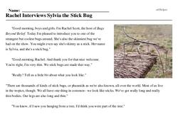 Print <i>Rachel Interviews Sylvia the Stick Bug</i> reading comprehension.