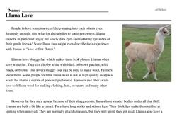 Print <i>Llama Love</i> reading comprehension.