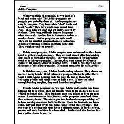Print <i>Adélie Penguins</i> reading comprehension.
