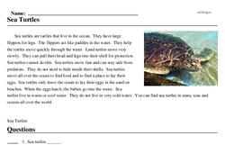 Print <i>Sea Turtles</i> reading comprehension.