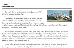 Print <i>Blue Whales</i> reading comprehension.