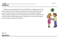 Print <i>Mistletoe</i> reading comprehension.